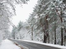 高速公路在一个多雪的森林里 库存照片