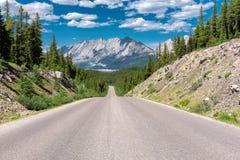 高速公路在加拿大罗基斯,贾斯珀国家公园 免版税库存照片
