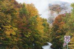 高速公路在秋天 库存照片