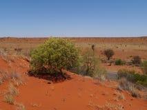 高速公路在红色澳大利亚沙漠 免版税库存照片