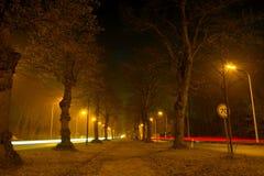 高速公路在薄雾的晚上 免版税图库摄影