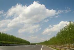 高速公路春天 库存照片