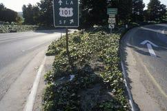 101高速公路签到加利福尼亚 库存图片
