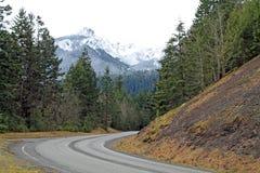 高速公路通过导致积雪覆盖的山的森林 库存照片