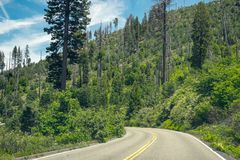 高速公路通过山口在优胜美地国家公园 免版税图库摄影