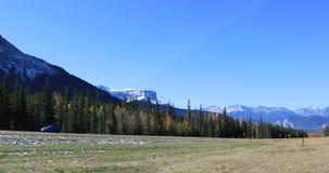 高速公路通过贾斯珀国家公园,加拿大4K 股票视频