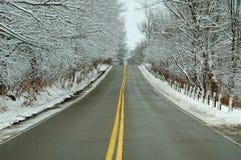 高速公路雪 库存照片