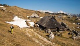 高高山牧场地Velika Planina远足者走的thorugh风景风景在斯洛文尼亚在春天 免版税图库摄影