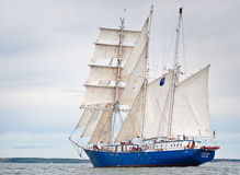 高concordia的船 库存图片