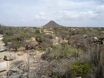 高Jamanota小山在阿鲁巴 库存照片