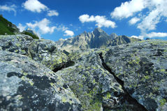 高Tatras上面在背景中 库存照片