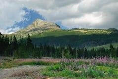 高Tatras山上面,斯洛伐克 库存照片
