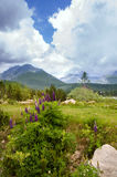 高Tatras, mounines,斯洛伐克 免版税库存照片