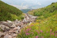 高Tatras -从Skalnate pleso山湖看 库存照片