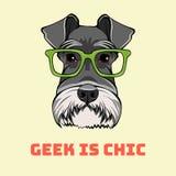 髯狗狗怪杰画象 聪明的玻璃 狗书呆子 怪杰是别致的字法 向量 库存图片