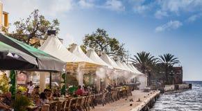 鬣鳞蜥咖啡馆- Punda江边 库存图片