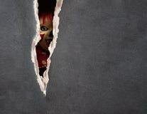 鬼小丑黑暗的系列 免版税库存照片