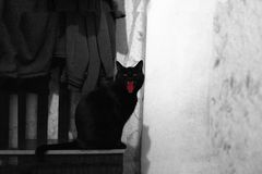 鬼的恶意嘘声剪影在万圣夜夜、黑色&白色的 免版税库存照片