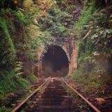 鬼的有薄雾的被放弃的铁路隧道 免版税库存照片