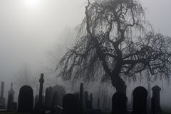 鬼的老墓地 免版税图库摄影