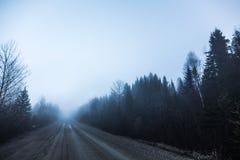 鬼的雾和坏可见性在一条农村路在森林里 免版税库存照片