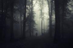 鬼魂在万圣夜在有雾的神奇黑暗的森林里 免版税库存照片