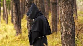 鬼魂在森林 股票录像