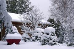 魁北克场面冬天 免版税库存照片