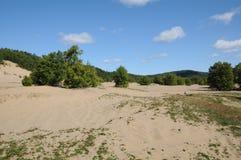 魁北克, Tadoussac美丽如画的沙丘  免版税库存图片