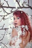 魅力有羽毛的时装模特儿夫人画象  免版税库存图片