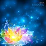 魔术光亮的彩虹上色神秘的花 库存照片