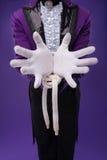 魔术师完善精通  图库摄影
