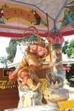 魔术猴子 库存照片