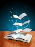 魔术的书 免版税库存图片