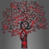 魔术结构树 免版税库存图片