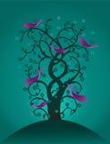 魔术结构树 库存照片