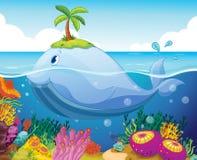 鱼、海岛和珊瑚在海运 向量例证