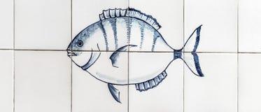 鱼、金枪鱼、蓝色和油脂 免版税库存图片
