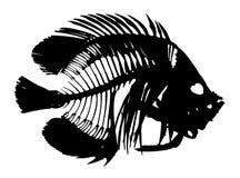 鱼乐趣例证概要向量 免版税图库摄影