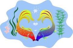 鱼亲吻 图库摄影
