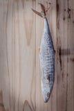 鱼保存通过烘干 梭子鱼被盐溶的垂悬在老wo 免版税库存照片