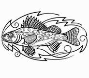 鱼出王牌 免版税图库摄影