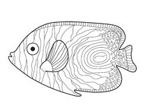 鱼剪影乱画样式 图画递她的温暖的妇女年轻人的早晨内衣 鱼彩图 也corel凹道例证向量 免版税图库摄影