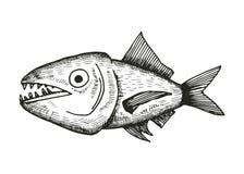 鱼剪影 图库摄影