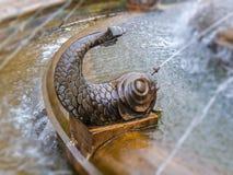 鱼古铜色形状与水射击的从嘴 免版税库存照片