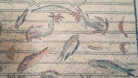 鱼和海爬行动物古老马赛克在Bardo博物馆的墙壁上在突尼斯 向量例证