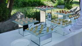 鱼和肉鱼镜盘上各式各样的小吃,供客人自助举办节日活动、聚会和婚礼 股票视频
