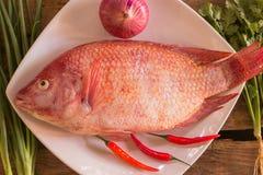 鱼和菜 库存照片
