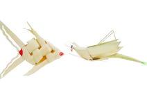 鱼和蝗虫 库存图片