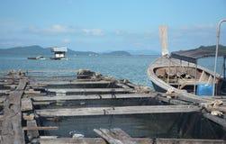 鱼和龙虾农场 免版税库存照片